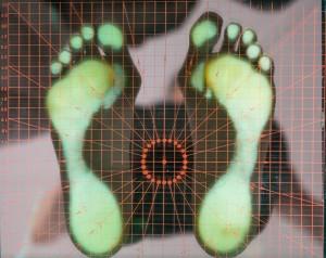 workshop tecnico-pratico sul Piede-piede-piedi piatti-piedi cavi-piede equino-piede torto-analisi del piede-postura del piede-Prof. Carmelo Giuffrida-Catania-2