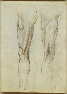 stabilità del ginocchio-ginocchio-Studio-Prof. Carmelo Giuffrida-Catania-2-immagine gratuita di proprietà della Royal Collection